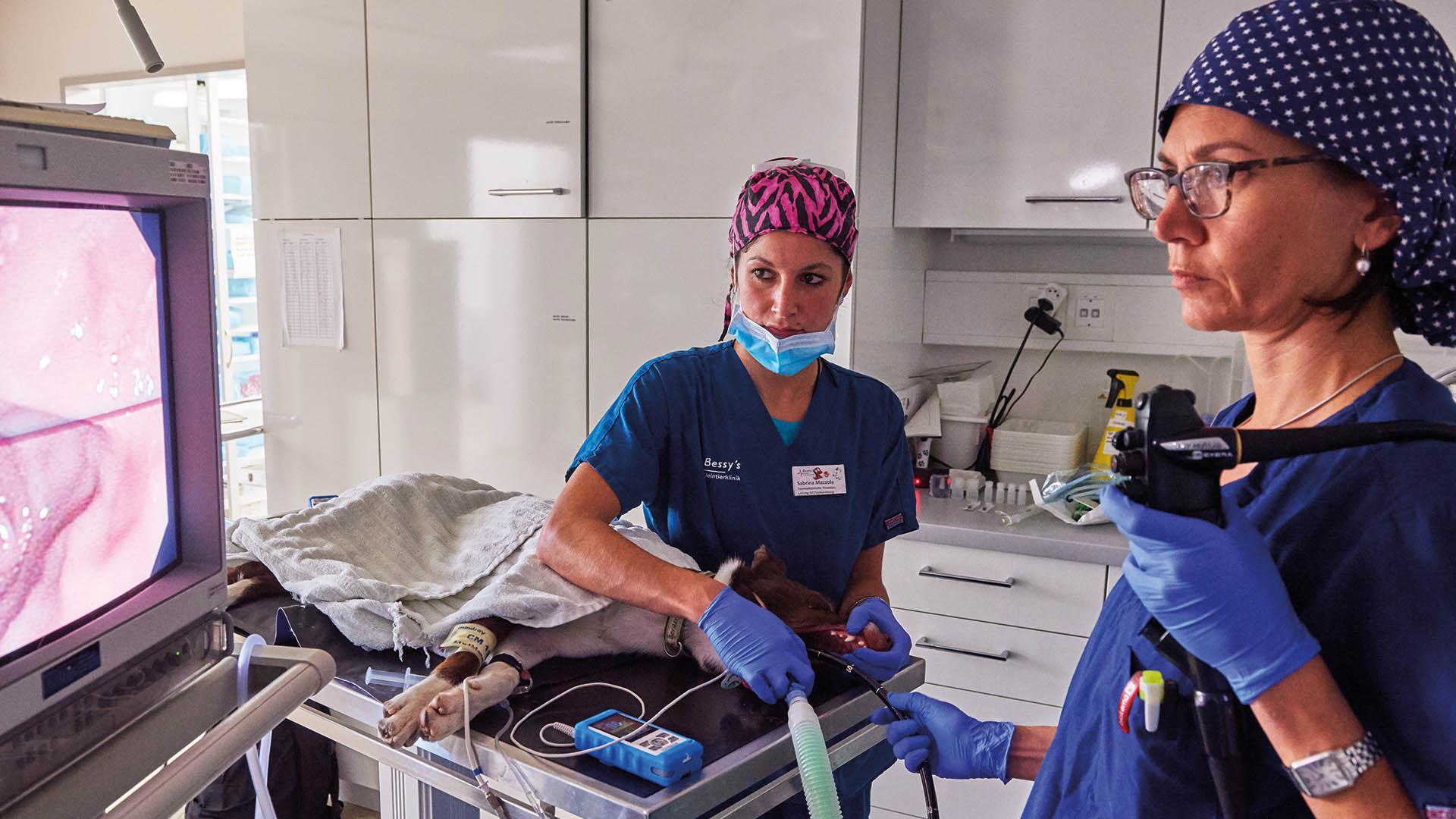OP - Endoskopie