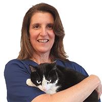 Dr. Michele Stengard