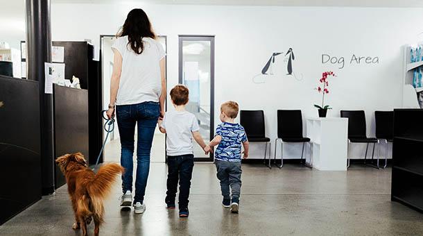 Hund mit Kunden Kindern